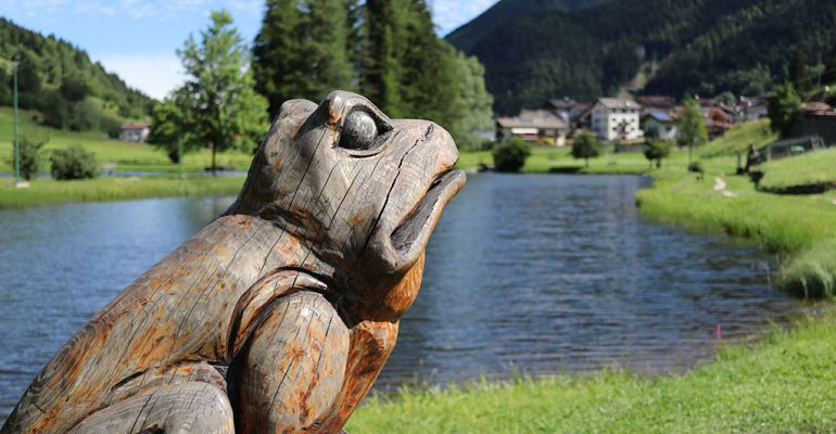 Lago delle buse altopiano pin trentino active hotel for Kit per palafitte